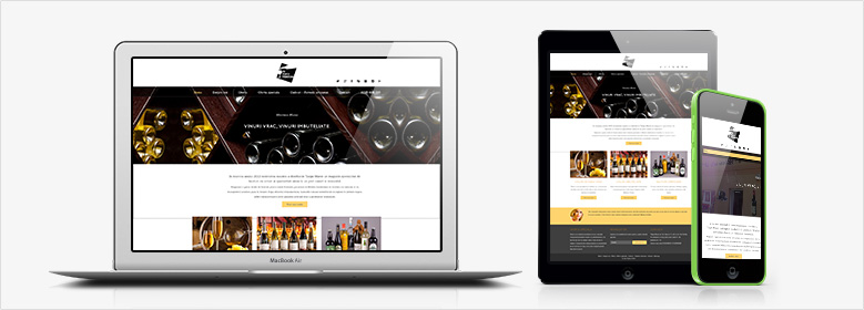 Exemple portofoliu pachet design site web