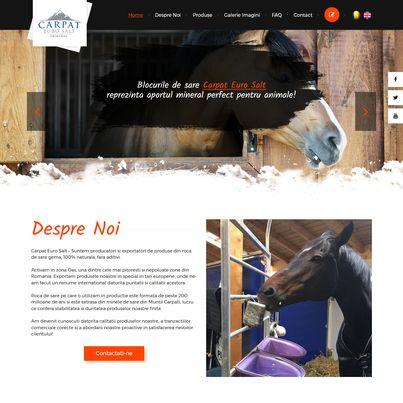 Design site web producator blocuri de sare animale - Carpat Euro Salt