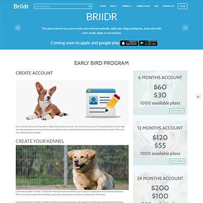 Creare portal anunturi online pentru canise - Briidr