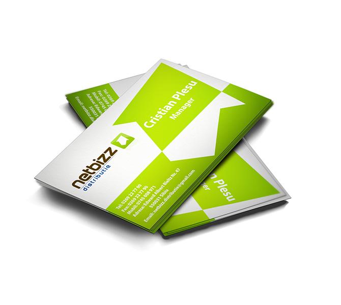Design carte de vizita firma distributie Netbizz