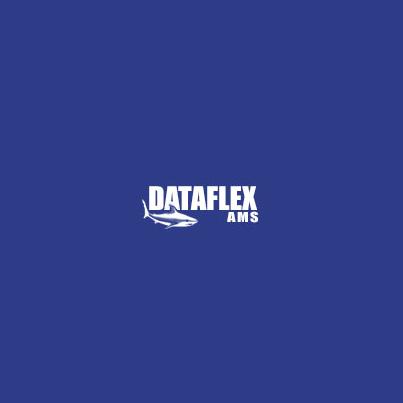 Design logo firma Dataflex AMS