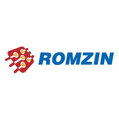 Design logo firma Romzin