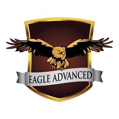 Design logo companie servicii securitate - Eagle Advanced