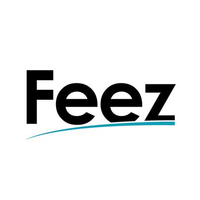 Design logo magazin online incaltaminte - Feez