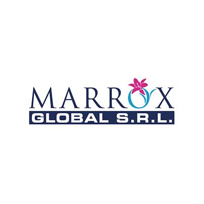 Design logo firma consultanta pentru afaceri - Marrox Global