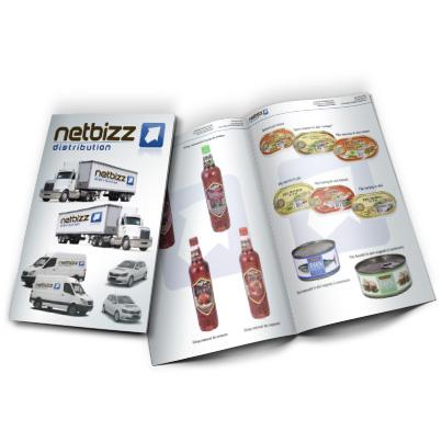 Design brosura firma distributie NetBizz